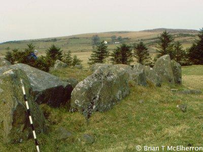 Gowkstown Wedge Tomb