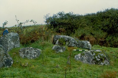 Largantea Wedge Grave